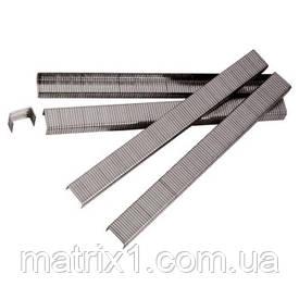 Скоби для пнів. степл., 13 мм, шир. - 1,2 мм, тол. - 0,6 мм, шир. скоби - 11,2 мм, 5000 шт.// MTX