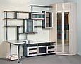Изготовление мебели в Гостиную на заказ, фото 4