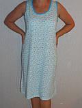 Сорочка женская 5-003 хлопок 58-68 р Саванна, фото 2