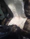 Авточехлол из натуральных овечьих шкур, фото 7