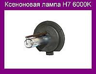 Ксеноновая лампа H7 6000K!Акция