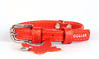 Ошейник COLLAR GLAMOUR без украшений, ширина 20мм, длина 30-39см оранжевый 32934
