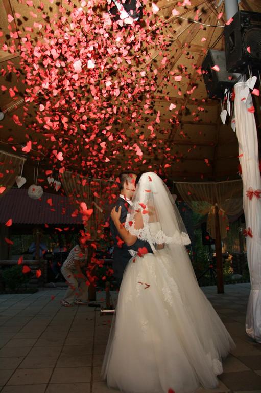 Наши женихи и невесты 12