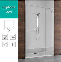 Душевая дверь Radaway Euphoria DWJ