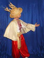 Колосок прокат карнавального костюма