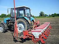 Предлагаем семена для посева и выращивание тыквы.  Закупаем семечку тыквы.