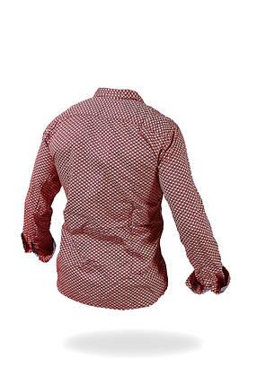 Рубашка мужская RIV/SD LAB, фото 2