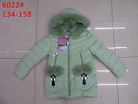 Детская зимняя куртка для девочки (рост 134-158)