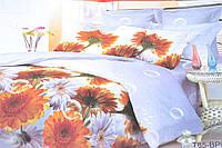 Евро комплект постельного белья (AN301/609)