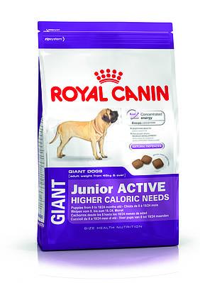 Giant Junior Active (старше 8 месяцев) 15 кг