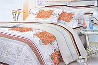 Евро комплект постельного белья (AN301/606)