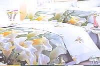 Евро комплект постельного белья (AN301/611)