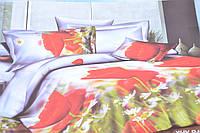 Евро комплект постельного белья (AN301/616)