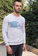 Серый мужской свитшот De Facto с рисунком на груди