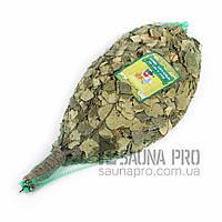 Веник березовый в упаковке, Saunapro