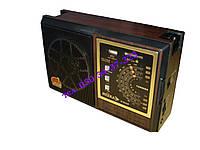 Радиоприёмник NEEKA NK-9922UAR, фото 1