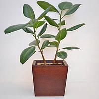 """Вазон из дерева для комнатных растений""""TRAPEZE"""", форма трапеция, новая коллекция """"Stylish INTERIOR"""""""