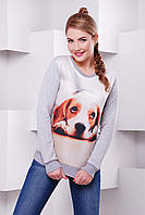 Женский свитшот с принтом Cotton ТМ  FashionUp 42-50 размеры