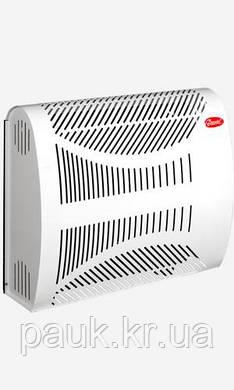"""Конвектор газовий 2 кВт(авт.MP) """"Данко-Бриз"""", фото 2"""