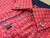 Осенние детские рубашки-стильные и модные от 8 до 9 лет. Производство BORREGO-Турция. (Осень-2017г.)