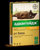 Адвантейдж капли от блох для кошек и декоративных кроликов