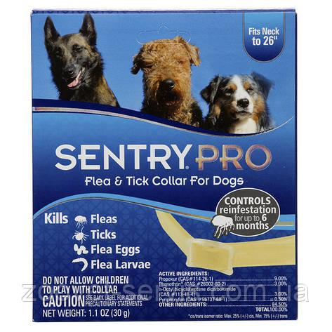 Ошейник для собак от блох и клещей Sentry Pro (Сентри Про), фото 2