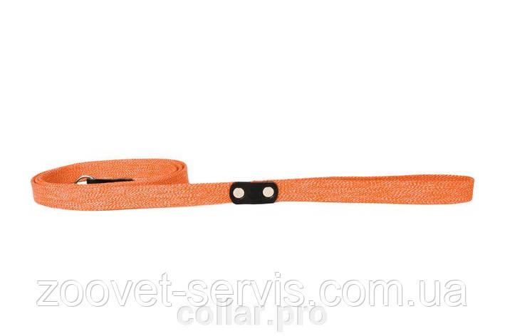 ПОВОДОК  брезентовый цветной для собак (ширина 2см., длина 200 см.), фото 2