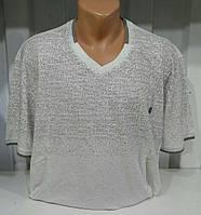 Мужская футболка (3XL,4XL,5XL) — от компании Discounter.top