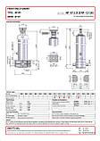 Гидроцилиндр с шарниром и кронштейном Binotto MF 187-5-5125 RP (фронтальный), фото 2