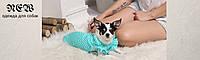 Пошив одежды для собак (zkzdog_01)