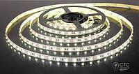Cветодиодная LED лента Feron LS607, 30SMD(5050)/м 7.2Вт/м 5м  холодный белый