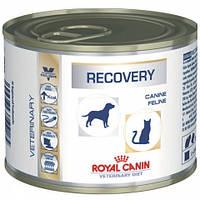 Роял Канин Recovery - Диета в восстановительный период после болезни, интенсивной терапии для собак и кошек, 195г