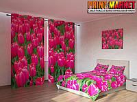 Фотокомплект розовые тюльпаны