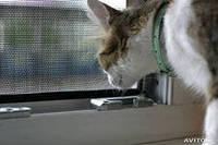 Москитная сетка окно