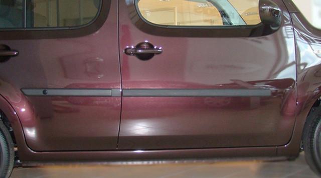 Door moldings Nissan Cube 2009-2011 F-4