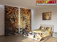 Фотокомплект глаза тигра
