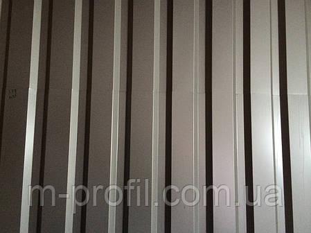 Профнастил ПС-20 ,  0,45мм, фото 2