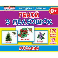 Геній з пелюшок: Рослини (Світогляд, методика Домана), укр. (13107042У)