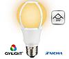 Светодиодная лампа A60 K2F60T11