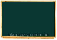 Школьная доска магнитная мел/маркер 1000*1000