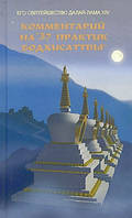 "Комментарий на ""37 практик Бодхтсаттвы"". Далай-лама"