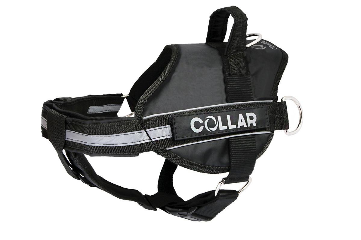 Шлея Police N4 70-100 см DogExtremе для собак з ліхтариком зі змінним ліпленням чорна