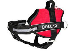 Шлея Police N4 70-100 см DogExtremе для собак з ліхтариком зі змінним написом червона