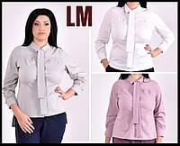 От 42по 74р Женская красивая блузка 770587 серая розовая белая батал большого размера деловая осенняя весенняя