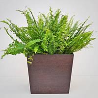 """Вазон из дерева для комнатных растений """"TRAPEZE"""", новая коллекция """"Stylish INTERIOR"""""""