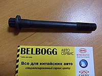 Болт головки блока (короткий) Geely GC6/Джили ЖС6/Джілі ЖС6