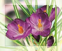 Картина на стекле с МДФ подложкой Цветы 50*60 см