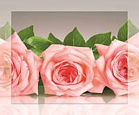 Картина на стекле с МДФ подложкой Нежные розы 50*60 см