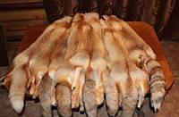 Мех, шкурки лисы рыжей. Выделанные.