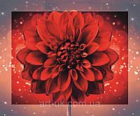 Картина на стекле с МДФ подложкой Красная георгина 50*60 см